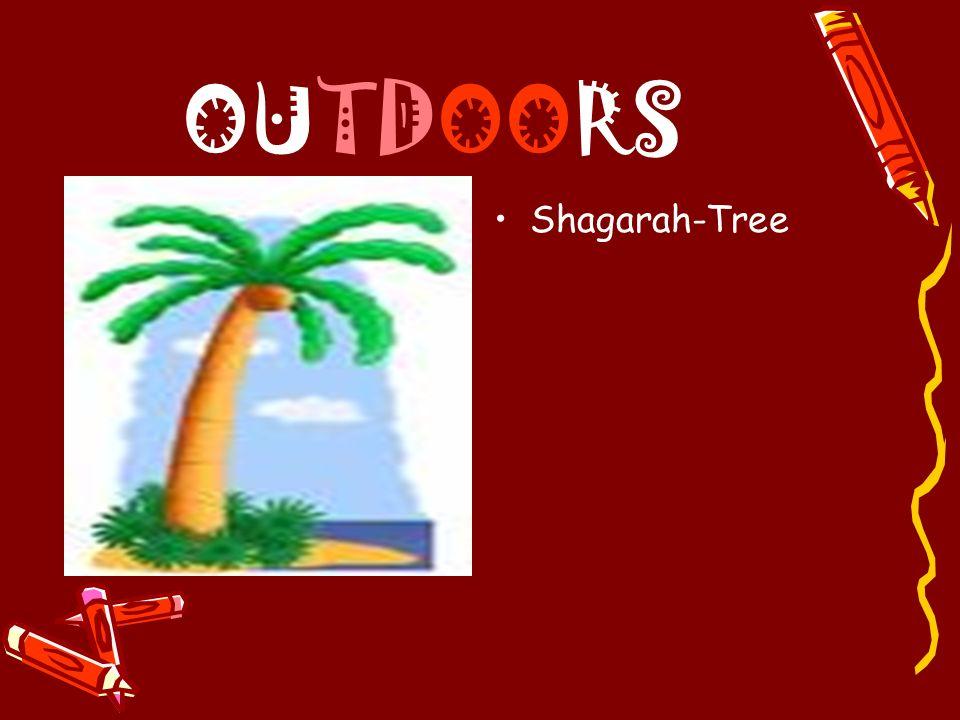OUTDOORS Shagarah-Tree