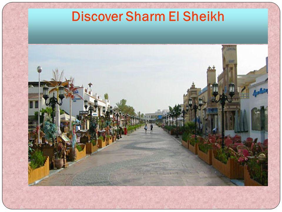 Discover Sharm El Sheikh