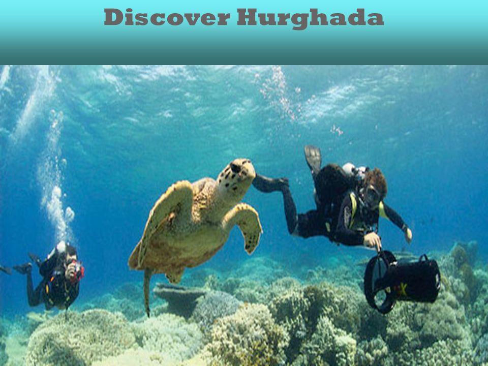 Discover Hurghada