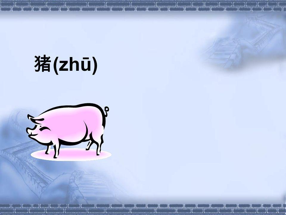 (zhū)