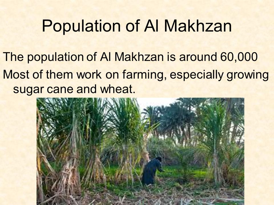 Population of Al Makhzan The population of Al Makhzan is around 60,000 Most of them work on farming, especially growing sugar cane and wheat.