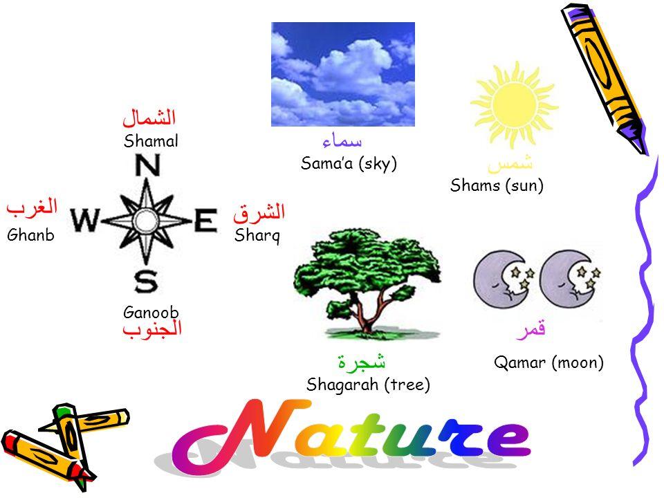 Shamal Sharq Ganoob Ghanb الشمال الجنوب الشرق الغرب شمس Shams (sun) Samaa (sky) سماء شجرة Shagarah (tree) قمر Qamar (moon)