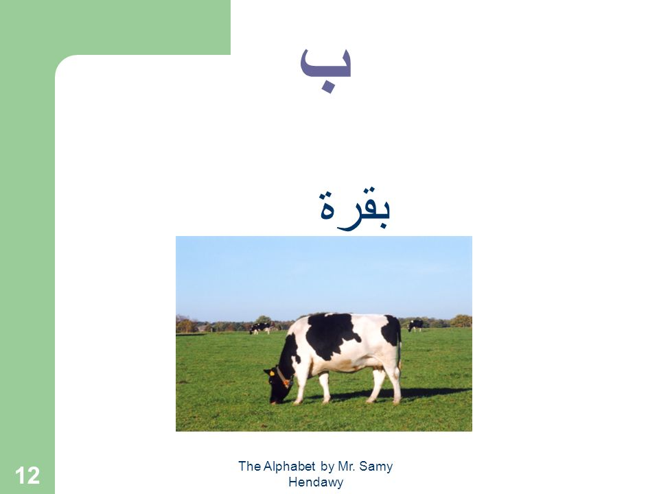 The Alphabet by Mr. Samy Hendawy 11 Words ب + ا + ب + ا = بــــا بــــا ب + ا + ب = باب __