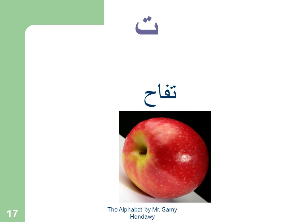The Alphabet by Mr. Samy Hendawy 16 words ت + ا + ب = تـاب ب + ا + ت = بات