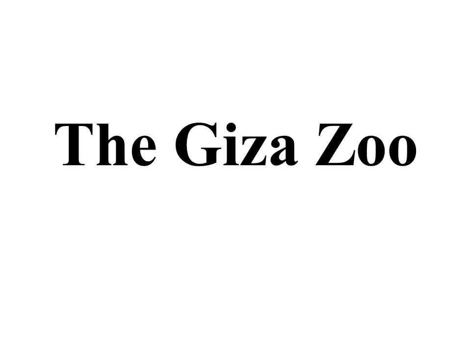 The Giza Zoo