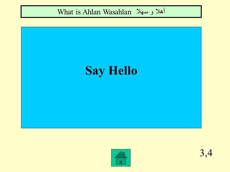 3,3 The Arabic word for cat What is Qettahقطة