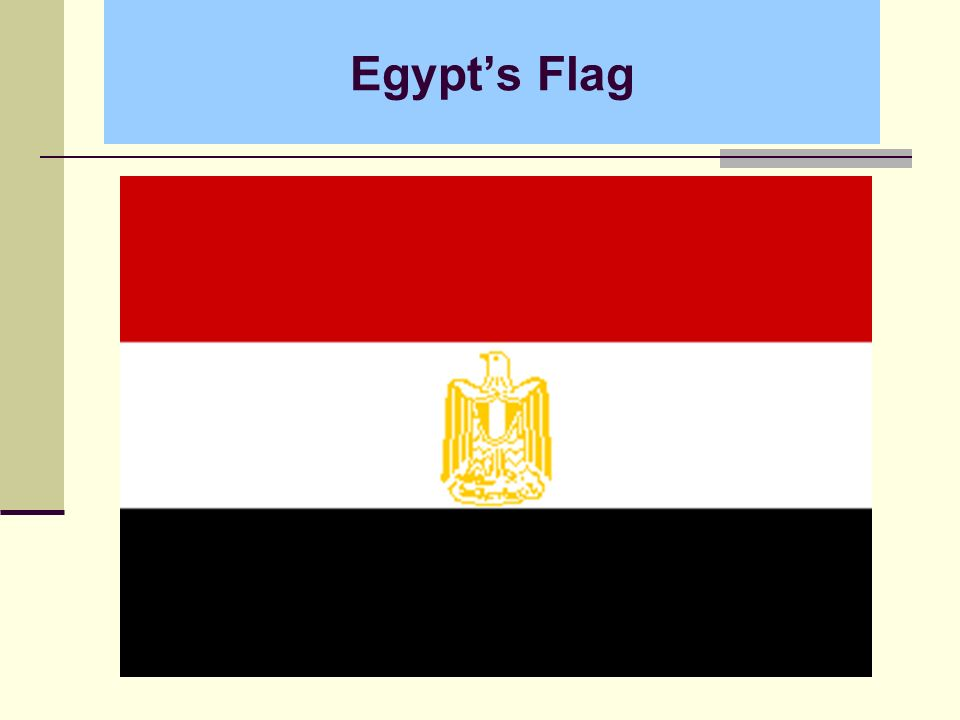 Egypts Flag