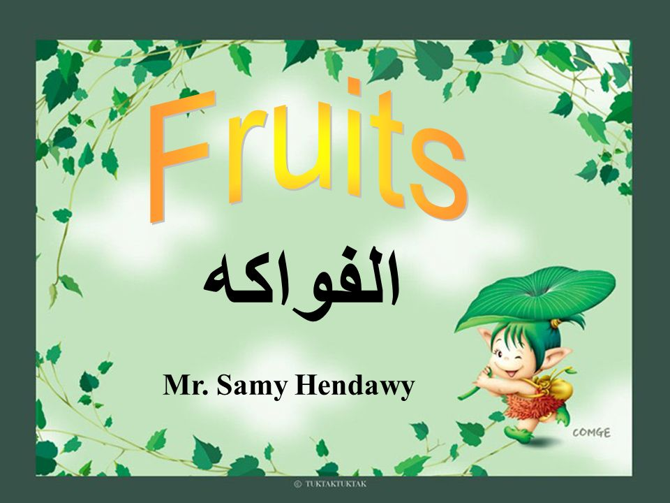 Mr. Samy Hendawy الفواكه