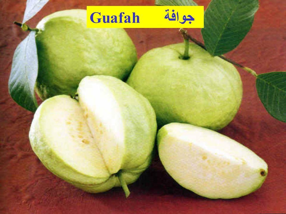 Guafah جوافة