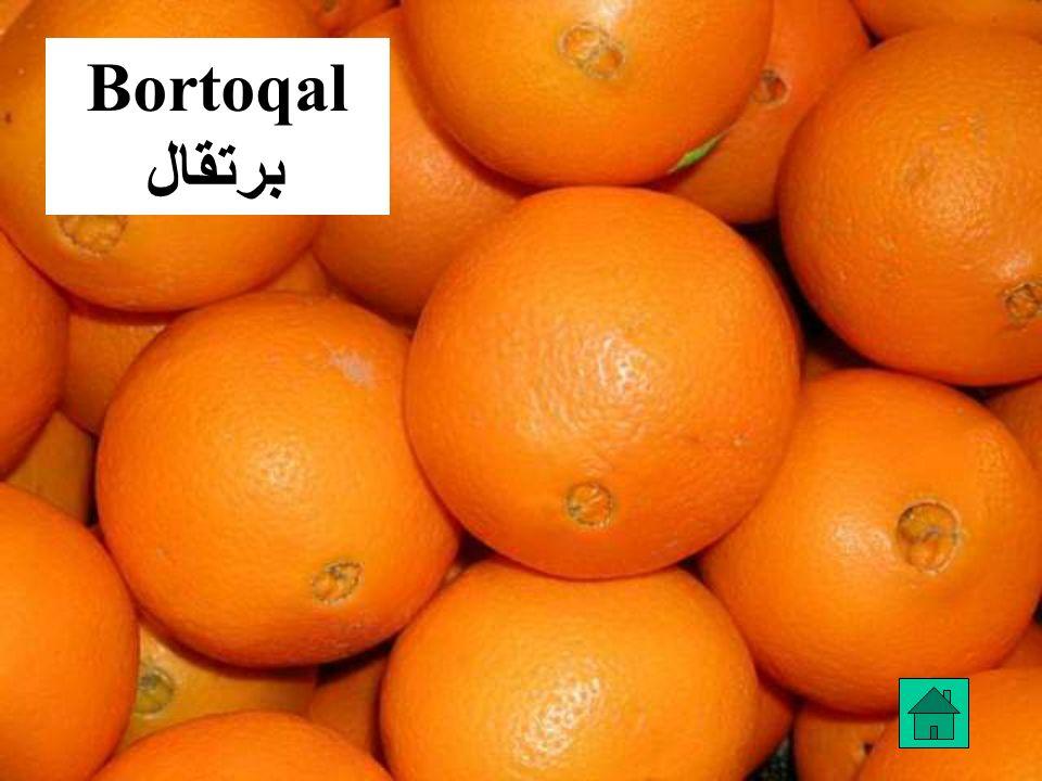 Bortoqal برتقال