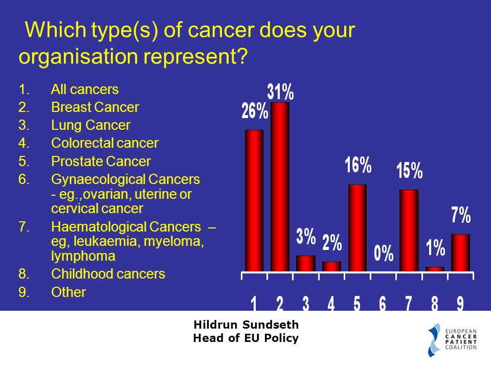 Hildrun Sundseth Head of EU Policy Which type(s) of cancer does your organisation represent.