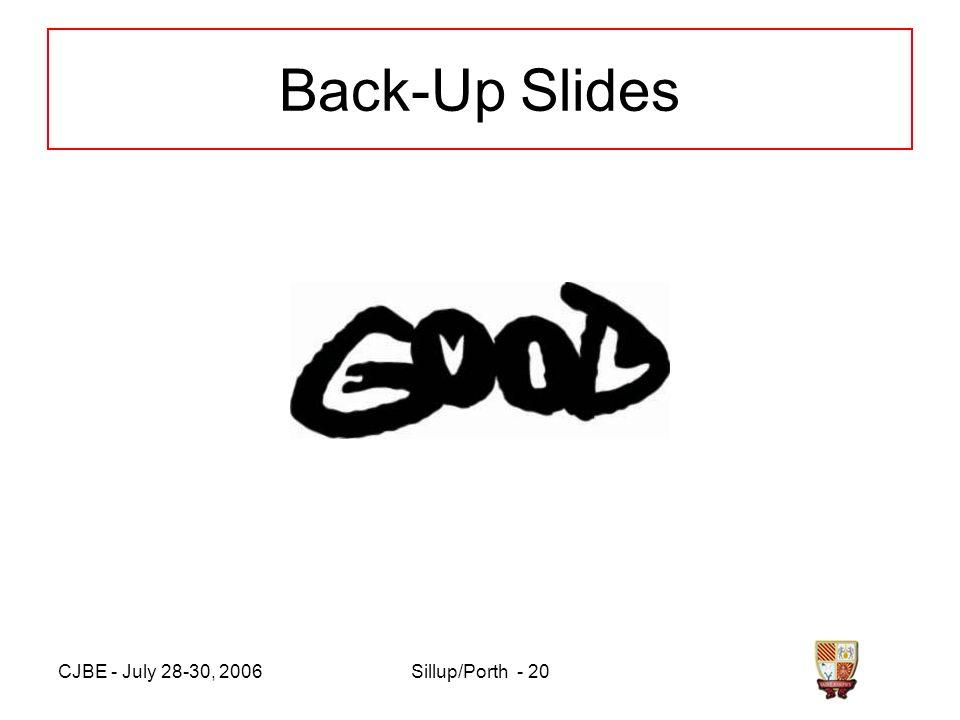 CJBE - July 28-30, 2006Sillup/Porth - 20 Back-Up Slides