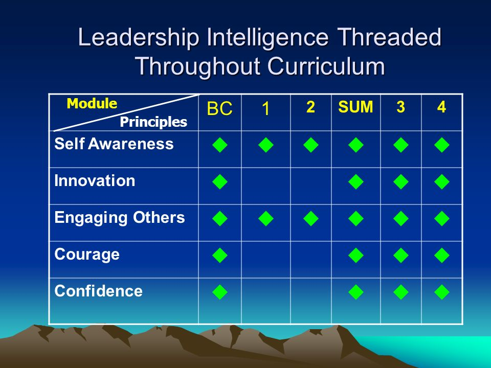 Leadership Intelligence Threaded Throughout Curriculum BC1 2SUM34 Self Awareness Innovation Engaging Others Courage Confidence Module Principles