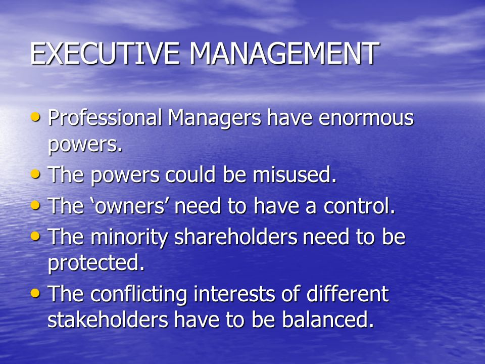 EXECUTIVE MANAGEMENT Professional Managers have enormous powers. Professional Managers have enormous powers. The powers could be misused. The powers c