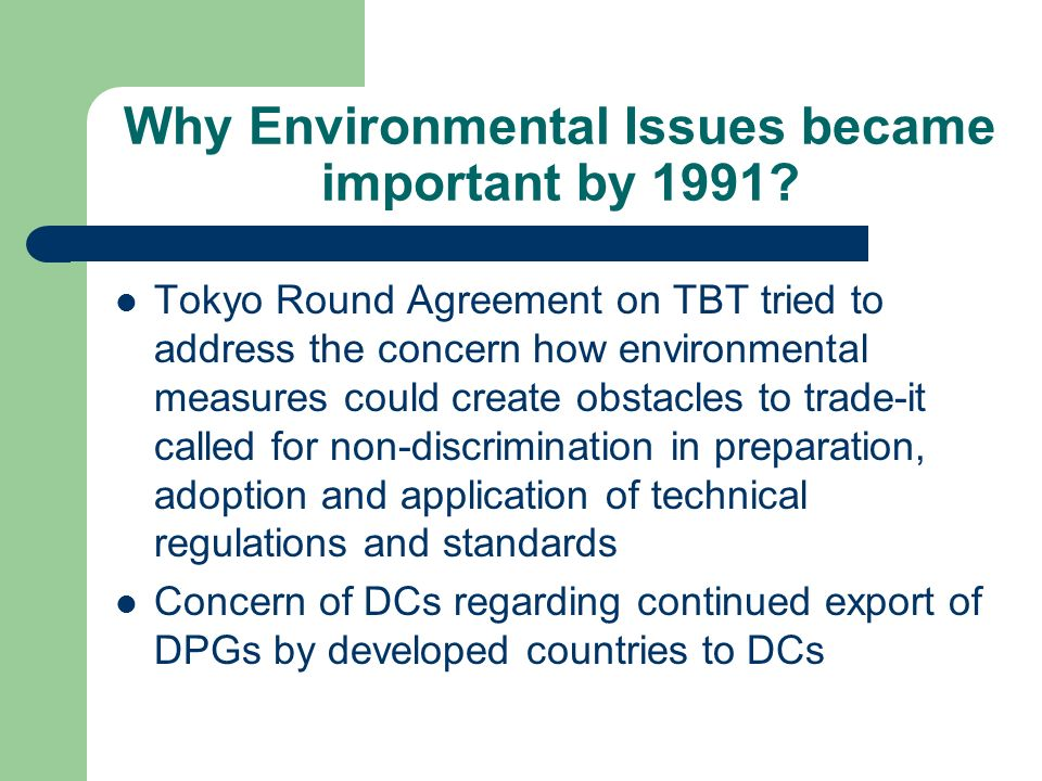 Why Environmental Issues became important by 1991.