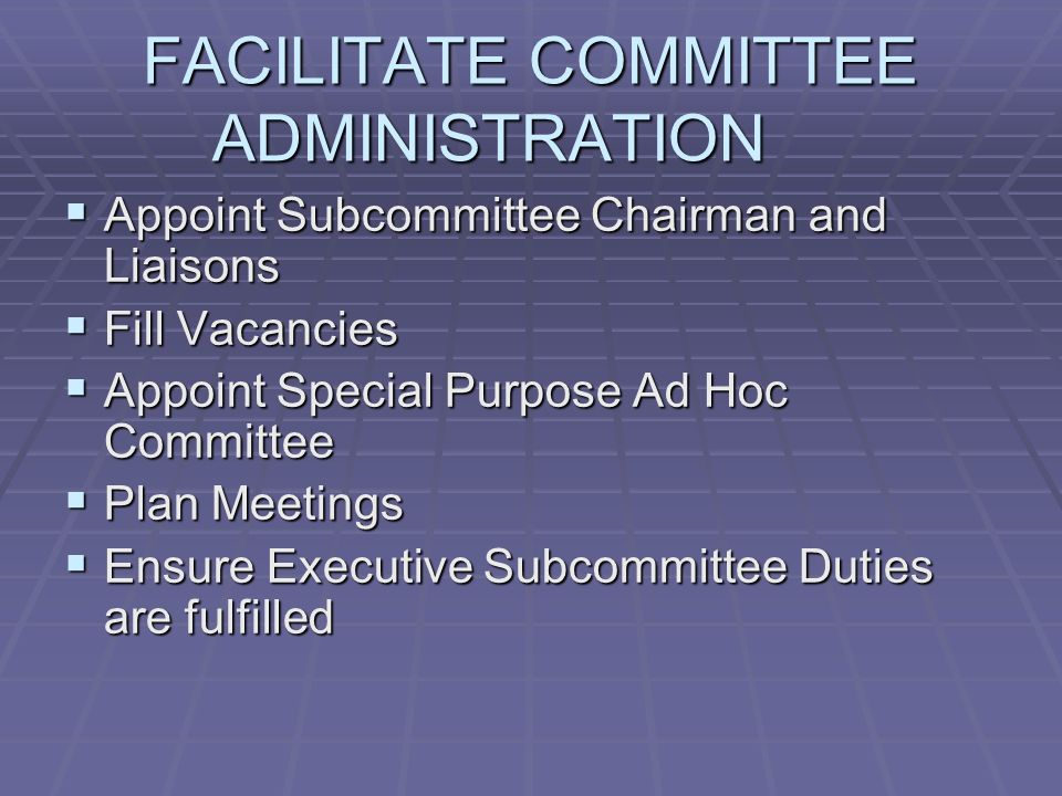FACILITATE COMMITTEE ADMINISTRATION Appoint Subcommittee Chairman and Liaisons Appoint Subcommittee Chairman and Liaisons Fill Vacancies Fill Vacancies Appoint Special Purpose Ad Hoc Committee Appoint Special Purpose Ad Hoc Committee Plan Meetings Plan Meetings Ensure Executive Subcommittee Duties are fulfilled Ensure Executive Subcommittee Duties are fulfilled