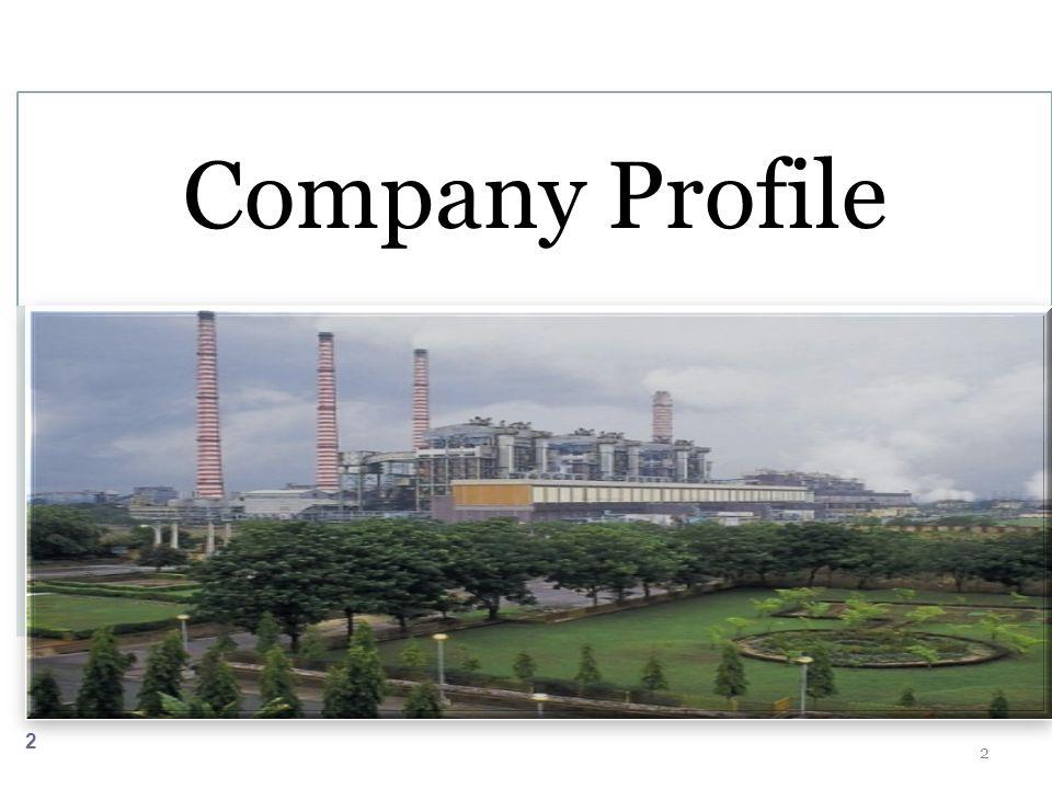 2 2 Company Profile