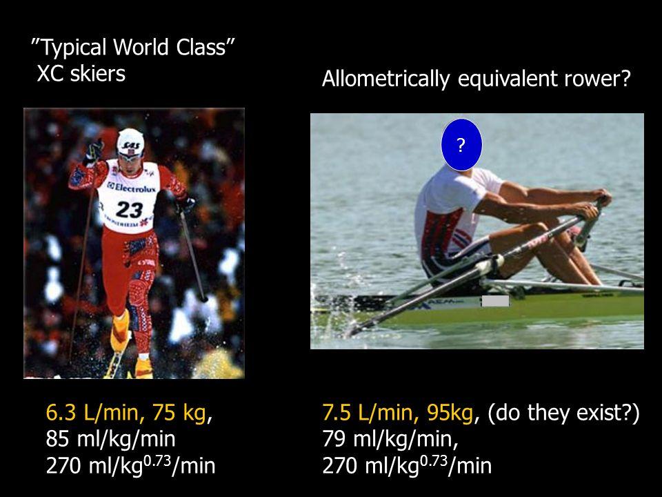 6.3 L/min, 75 kg, 85 ml/kg/min 270 ml/kg 0.73 /min Typical World Class XC skiers 7.5 L/min, 95kg, (do they exist?) 79 ml/kg/min, 270 ml/kg 0.73 /min Allometrically equivalent rower.