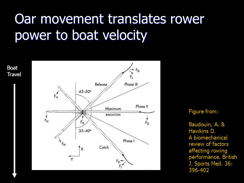 Oar movement translates rower power to boat velocity Figure from: Baudouin, A.
