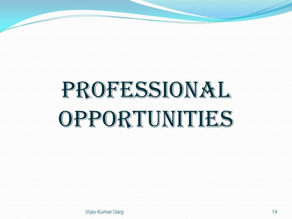 Vijay Kumar Garg14 Professional Opportunities