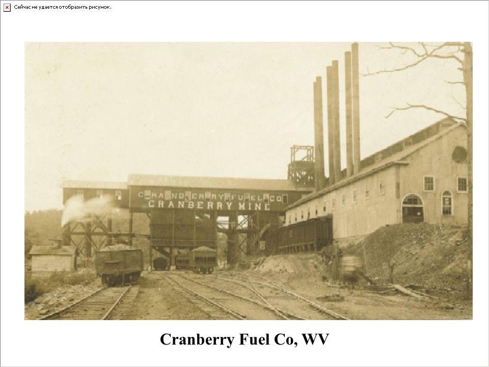 Cranberry Fuel Co, WV