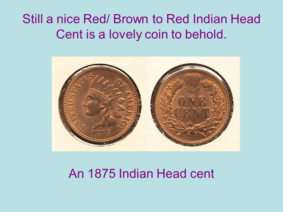 Still a nice Red/ Brown to Red Indian Head Cent is a lovely coin to behold.