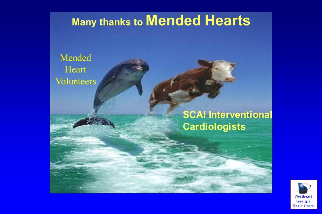 Northeast Georgia Heart Center SCAI Interventional Cardiologists Many thanks to Mended Hearts Mended Heart Volunteers