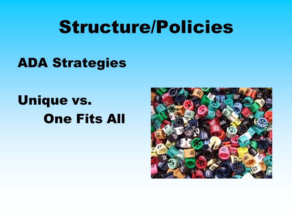 Structure/Policies ADA Strategies Unique vs. One Fits All
