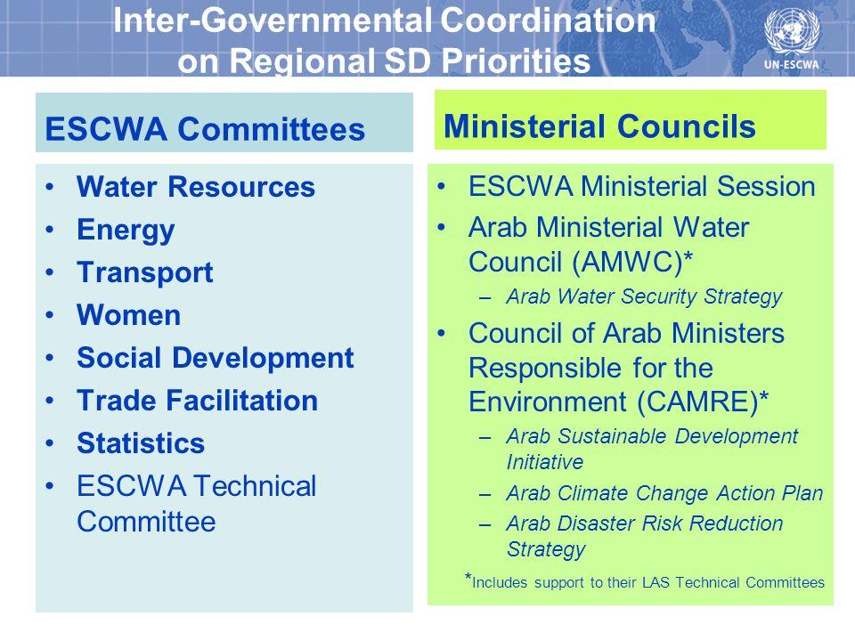 15 Inter-Agency Coordination RCM Members: ESCWA (Coordinator), UNAIDS, UNCTAD, UNDP, UNDOCO, UNEP, UNESCO, FAO, UNFPA, UNHABITAT, UNHCR, UNIC, UNICEF, UNIDO, UNIFEM, UNOHCHR, UNODC, UNOPS, UNRWA, UNU, ICAO, IFAD, ITU, ILO, IOM, IMF, LAS, OCHA, UPU, WFP, WHO, World Bank Regional Coordination Mechanism (RCM) TWG on Climate Change TWG on MDGs TWG on Food Security TWG on Statistics Civil Society Advisory Board