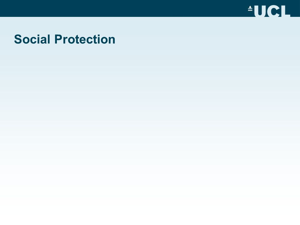 Social Protection