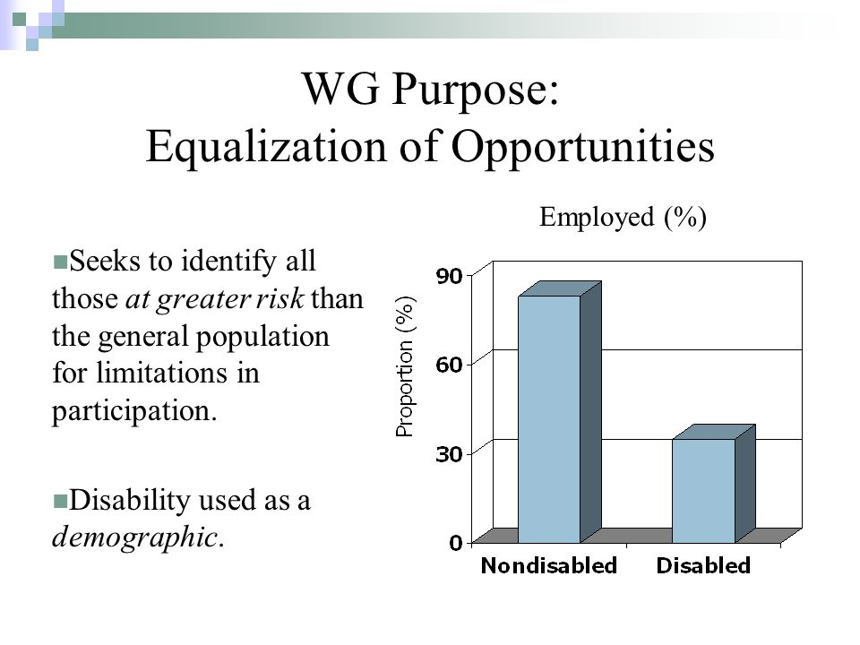 WG Purpose: Equalization of Opportunities Seeks to identify all those at greater risk than the general population for limitations in participation.
