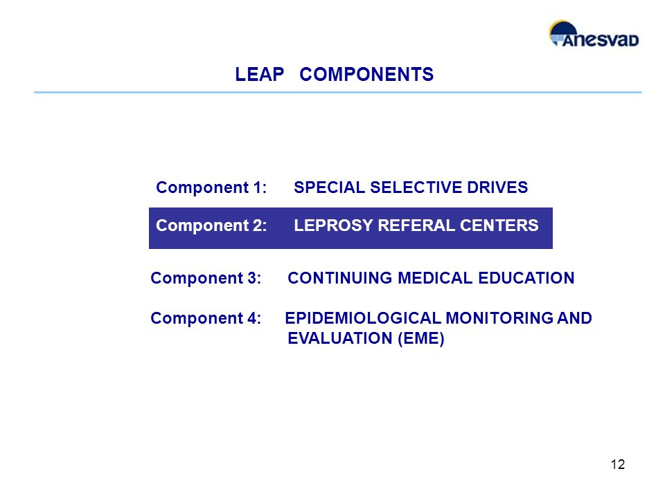 LEAP COMPONENTS 12 Component 3: CONTINUING MEDICAL EDUCATION Component 4: EPIDEMIOLOGICAL MONITORING AND EVALUATION (EME) Component 2: LEPROSY REFERAL CENTERS Component 1: SPECIAL SELECTIVE DRIVES