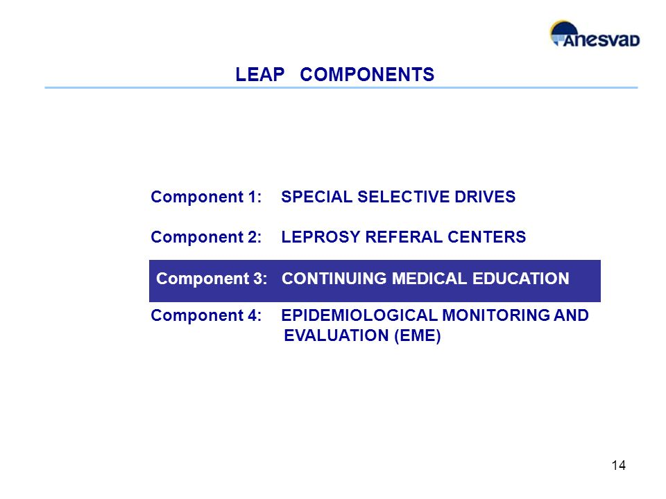 LEAP COMPONENTS 14 Component 1: SPECIAL SELECTIVE DRIVES Component 2: LEPROSY REFERAL CENTERS Component 4: EPIDEMIOLOGICAL MONITORING AND EVALUATION (