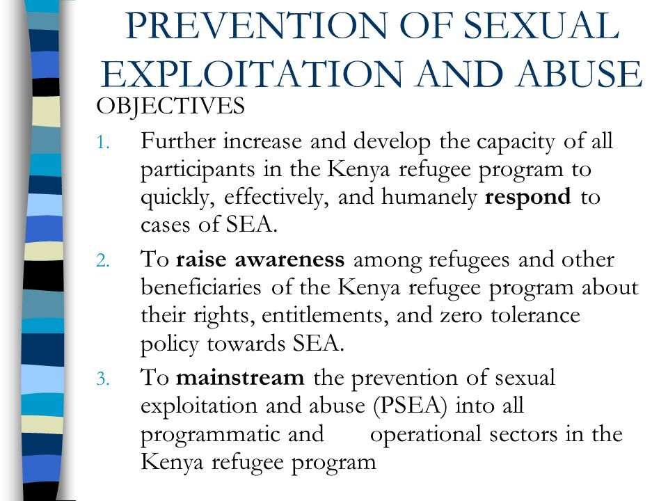 PREVENTION OF SEXUAL EXPLOITATION AND ABUSE OBJECTIVES 1.