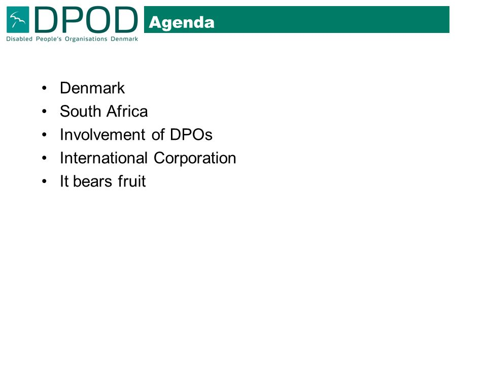 Agenda Denmark South Africa Involvement of DPOs International Corporation It bears fruit
