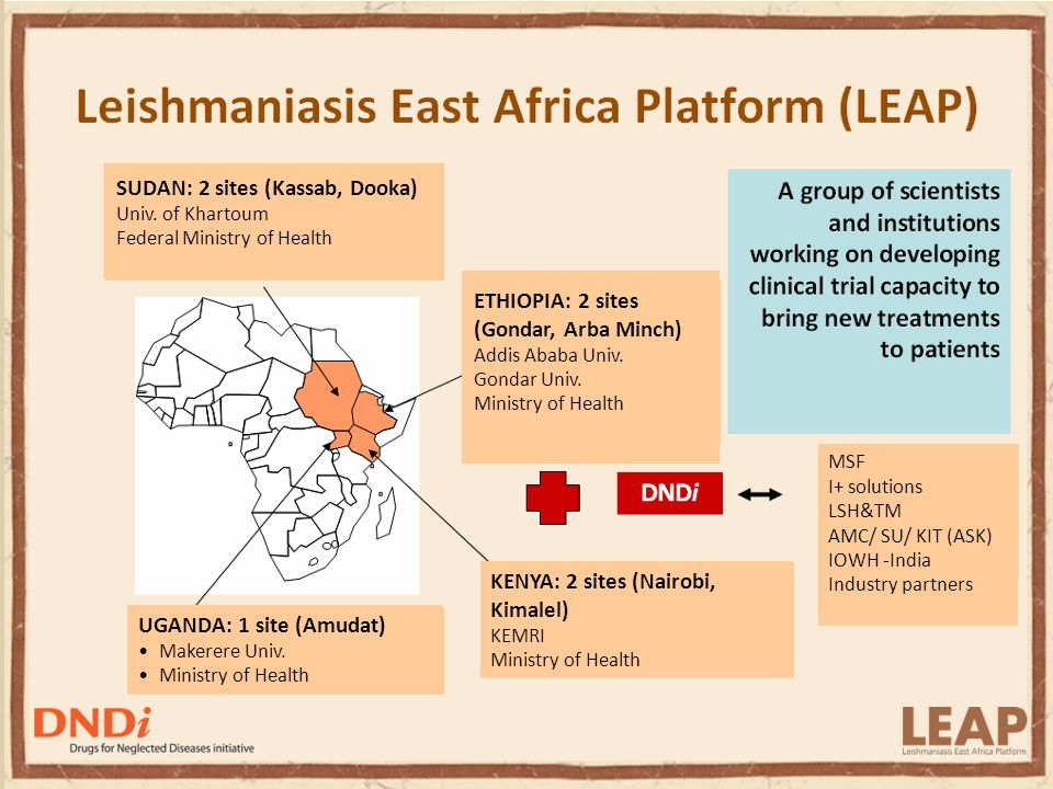 Best Science for the Most Neglected LEAP Objectives Facilitate clinical testing and registration of new treatments for VL in the region (Ethiopia, Kenya, Sudan and Uganda) Evaluate, validate and register improved options that address regional needs for VL Provide capacity strengthening for drug evaluation and clinical studies in the region