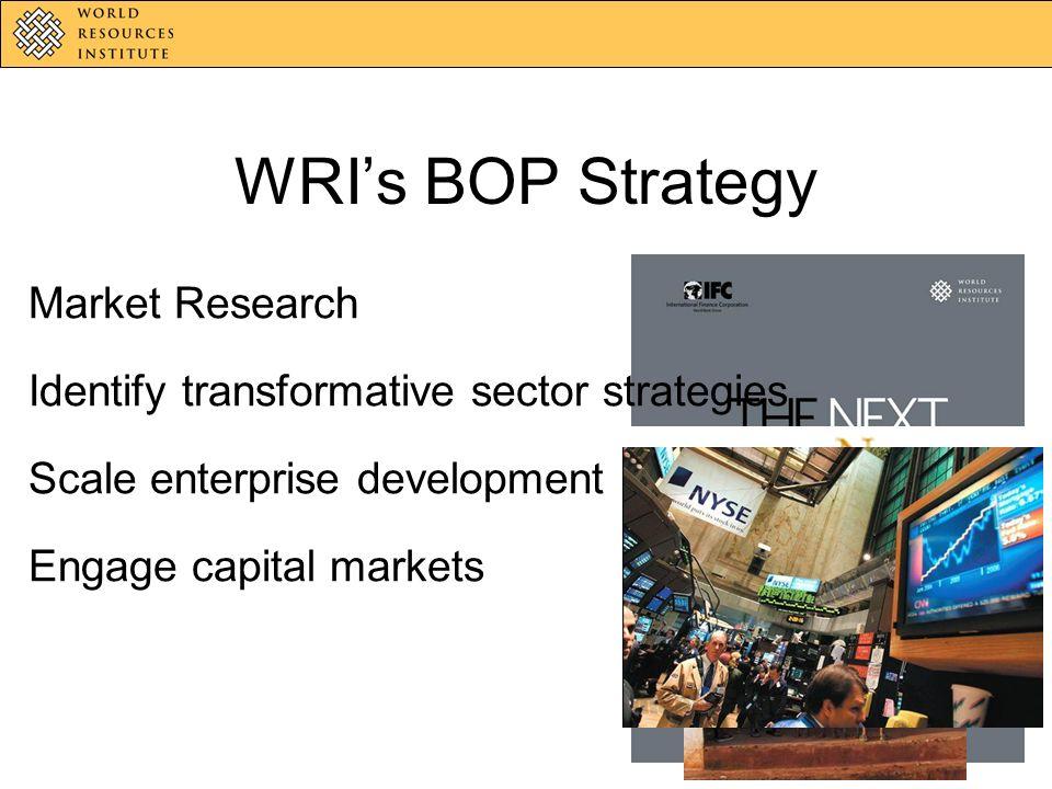 WRIs BOP Strategy Market Research Identify transformative sector strategies Scale enterprise development Engage capital markets