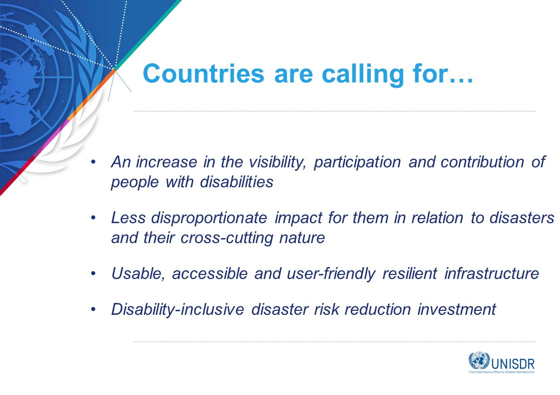 Countries are calling for… An increase in the visibility, participation and contribution of people with disabilities Less disproportionate impact for