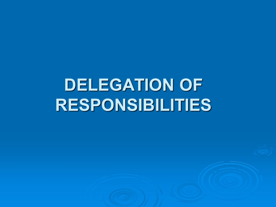 DELEGATION OF RESPONSIBILITIES