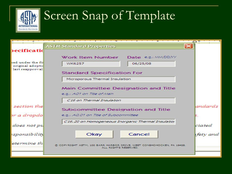 Screen Snap of Template