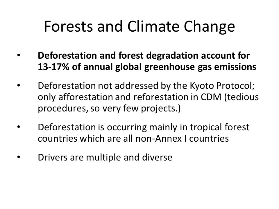 Forests and Climate Change Deforestation and forest degradation account for 13-17% of annual global greenhouse gas emissions Deforestation not addressed by the Kyoto Protocol; only afforestation and reforestation in CDM (tedious procedures, so very few projects.) Deforestation is occurring mainly in tropical forest countries which are all non-Annex I countries Drivers are multiple and diverse
