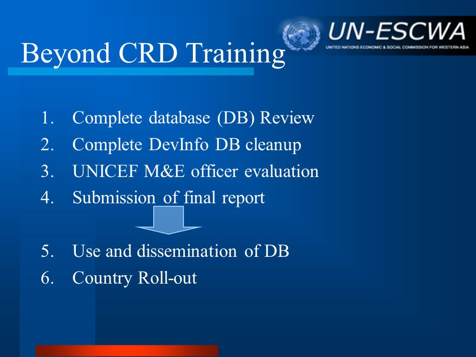Beyond CRD Training 1.Complete database (DB) Review 2.Complete DevInfo DB cleanup 3.UNICEF M&E officer evaluation 4.Submission of final report 5.Use a