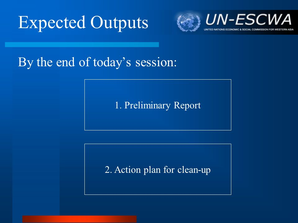 Expected Outputs By the end of todays session: 1. Preliminary Report 2. Action plan for clean-up