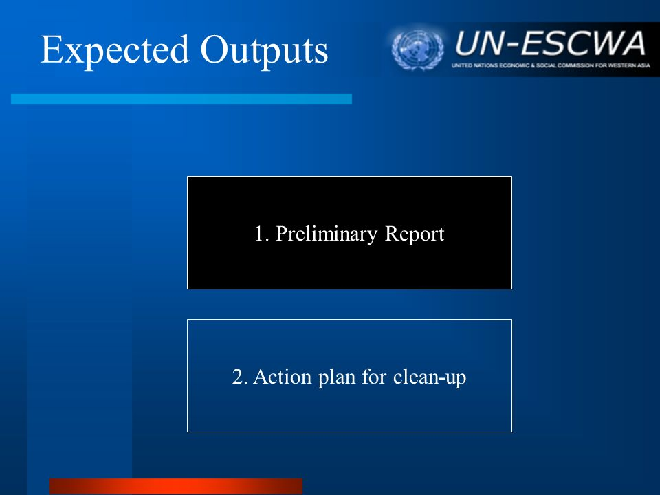 Expected Outputs 1. Preliminary Report 2. Action plan for clean-up