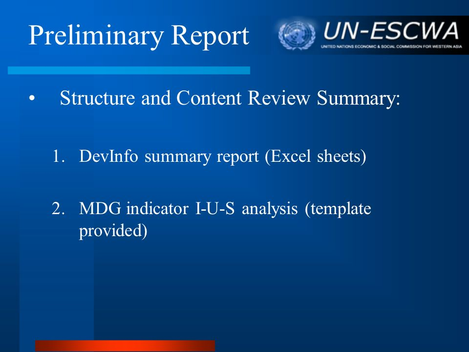 Preliminary Report Structure and Content Review Summary: 1.DevInfo summary report (Excel sheets) 2. MDG indicator I-U-S analysis (template provided)