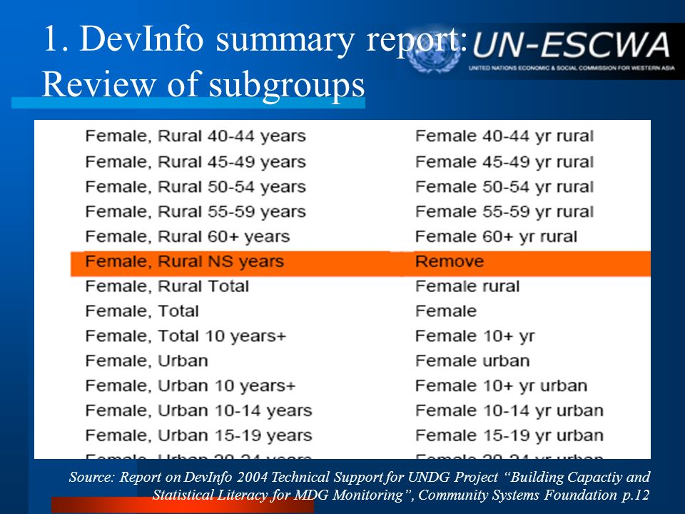 1. DevInfo summary report: Review of subgroups Source: Report on DevInfo 2004 Technical Support for UNDG Project Building Capactiy and Statistical Lit