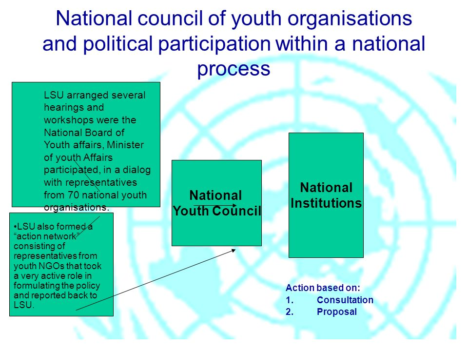 National Youth Council National Institutions National council of youth organisations and political participation within a national process Action base