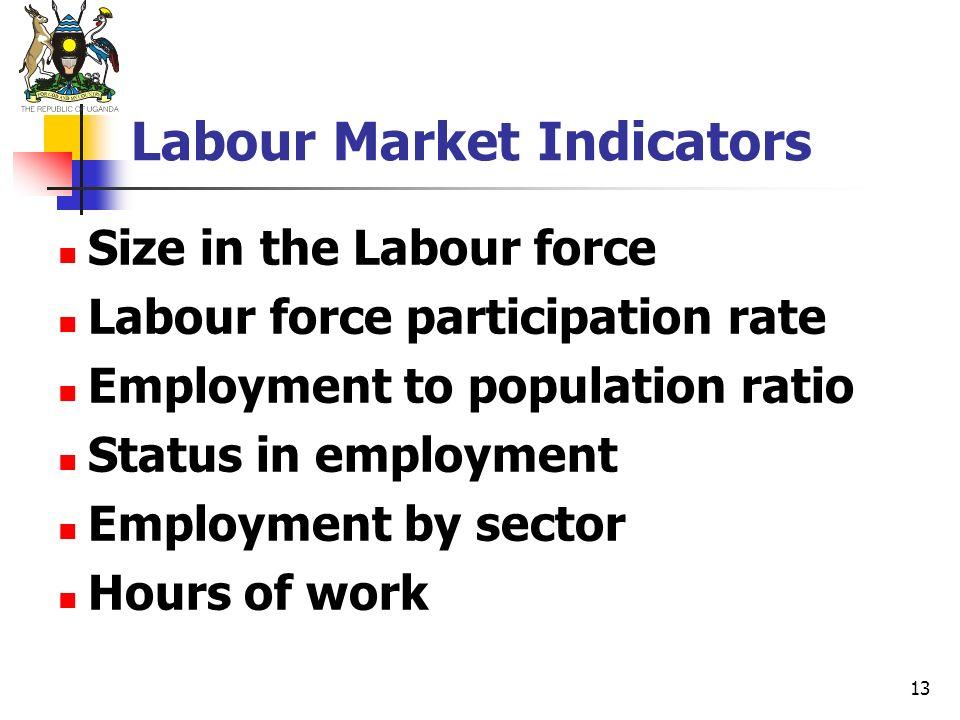 13 Labour Market Indicators Size in the Labour force Labour force participation rate Employment to population ratio Status in employment Employment by
