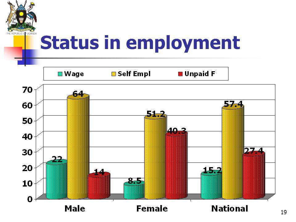 19 Status in employment