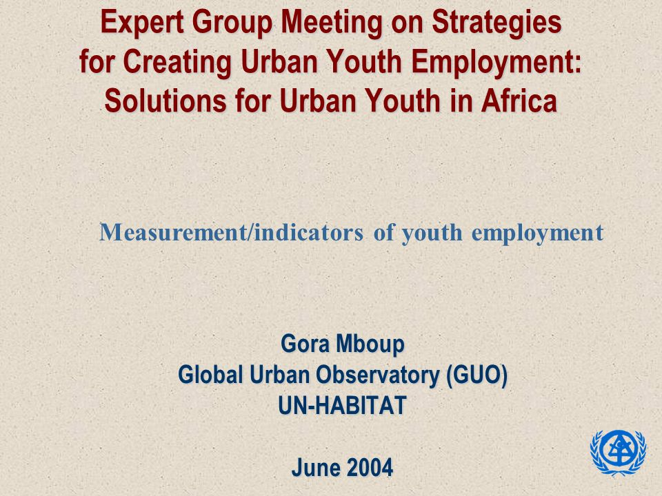 Expert Group Meeting on Strategies for Creating Urban Youth Employment: Solutions for Urban Youth in Africa Gora Mboup Global Urban Observatory (GUO)